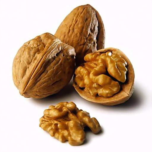 Орехи – великолепная приманка для карпа! | CarpBoat